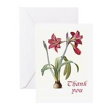 Redoute amaryllis Thank You cards 10 pk