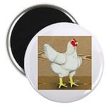 Cornish/Rock Hen Magnet