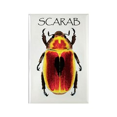 Scarab Rectangle Magnet (10 pack)