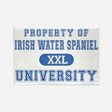 Irish Water Spaniel U. Rectangle Magnet (100 pack)
