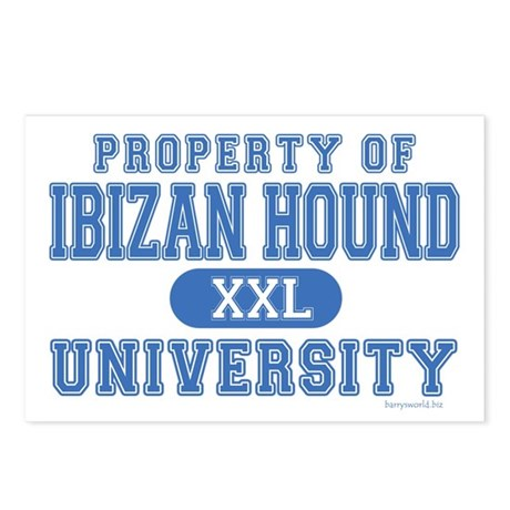 Ibizan Hound University Postcards (Package of 8)