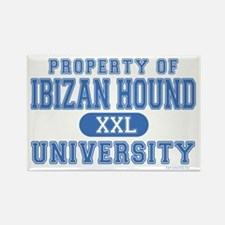 Ibizan Hound University Rectangle Magnet (100 pack