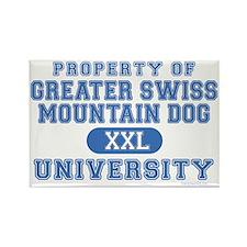 G.S.M.D. University Rectangle Magnet (100 pack)