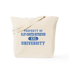 F.C.R. University Tote Bag