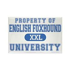 English Foxhound U. Rectangle Magnet (10 pack)