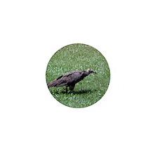 Vulture Mini Button (100 pack)