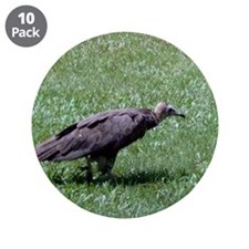 """Vulture 3.5"""" Button (10 pack)"""