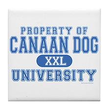 Canaan Dog U. Tile Coaster