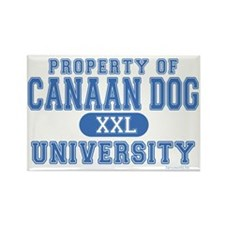 Canaan Dog U. Rectangle Magnet (10 pack)