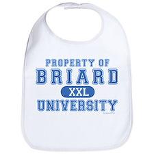 Briard University Bib