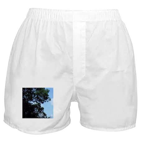 Trees Boxer Shorts