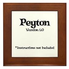 Peyton - Version 1.0 Framed Tile
