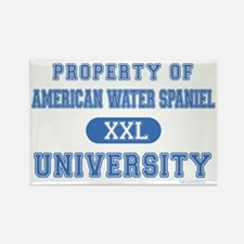 A.W.S. University Rectangle Magnet (100 pack)