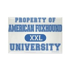American Foxhound U. Rectangle Magnet (10 pack)
