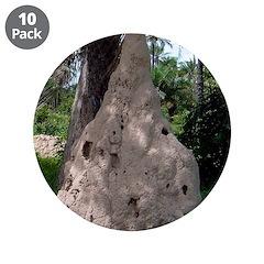 Termites 3.5