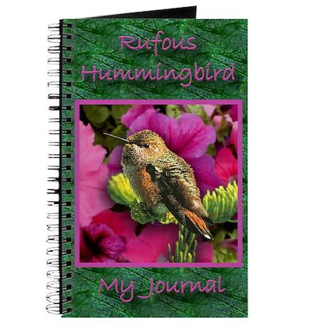 Rufous Hummingbird - Journal