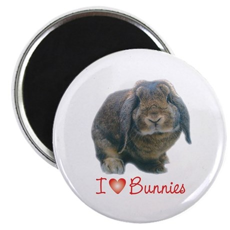bunny lover Magnet