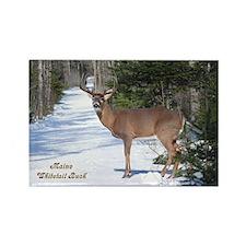 Winter Buck Rectangle Magnet