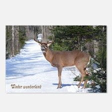Winter Buck Postcards (Package of 8)