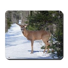 Winter Buck Mousepad
