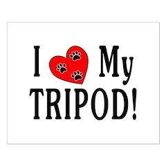 I Love My Tripod! Posters