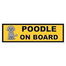 Grey Poodle on Board Bumper Bumper Sticker