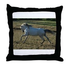 Cute Welsh ponies Throw Pillow