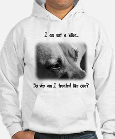 Pitbull Facts Jumper Hoody