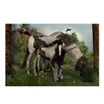 Painted Horse and Foal Postcards (Package of 8)