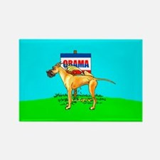 Fawn Dane Pi$$ on Obama Rectangle Magnet