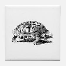 Hand Sketched Turtle Tile Coaster