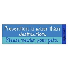 Prevention is Wiser Bumper Bumper Sticker