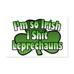 I'm So Irish I Shit Leprechauns Mini Poster Print