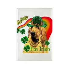 St. Patrick's Bloodhound Rectangle Magnet (10 pack
