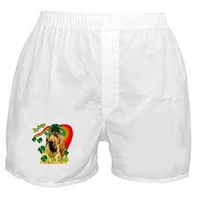 St. Patrick's Bloodhound Boxer Shorts