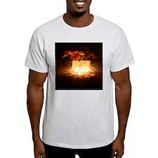 AILUG-I LOVE YOU GRANDMA T-Shirt