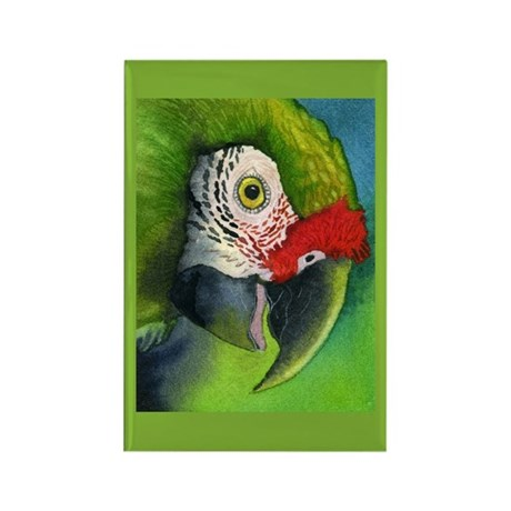 Green Military Macaw Rectangle Magnet