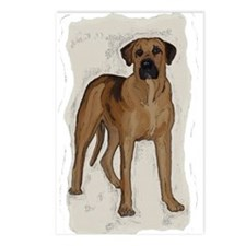 blackmouth cur portrait Postcards (Package of 8)
