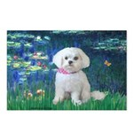Lilies / Maltese Postcards (Package of 8)