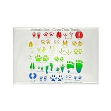 Rainbow 3D Animal Tracks Rectangle Magnet (10 pack