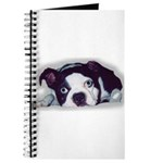 BOSTON TERRIER SWEET DOG Journal