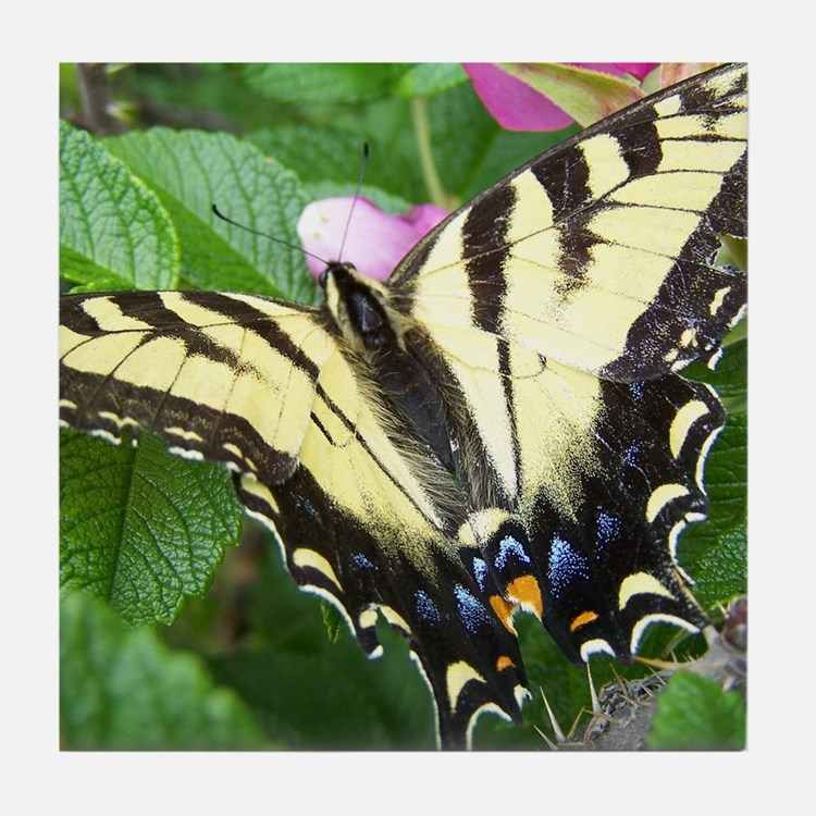 Swallowtail Butterfly Tile Coaster