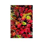 Autumn Rectangle Magnet (100 pack)