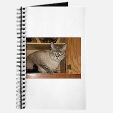 Buddha Cat Peeka-Boo! Journal