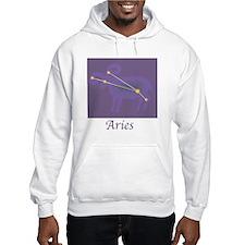 Aries Astrology 3 Hoodie