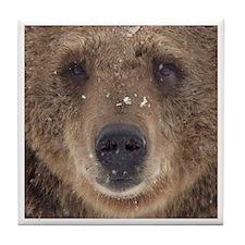 Bear Face Tile Coaster