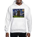 Starry Night / Affenpinscher Hooded Sweatshirt