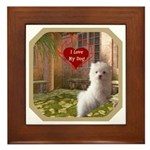 Maltese Puppy Framed Tile