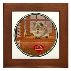 Guinea Pig #2 Framed Tile