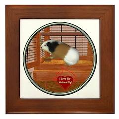 Guinea Pig #3 Framed Tile